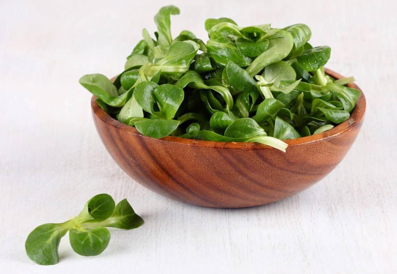 Можно ли заморозить микрозелень: лучшие варианты хранения