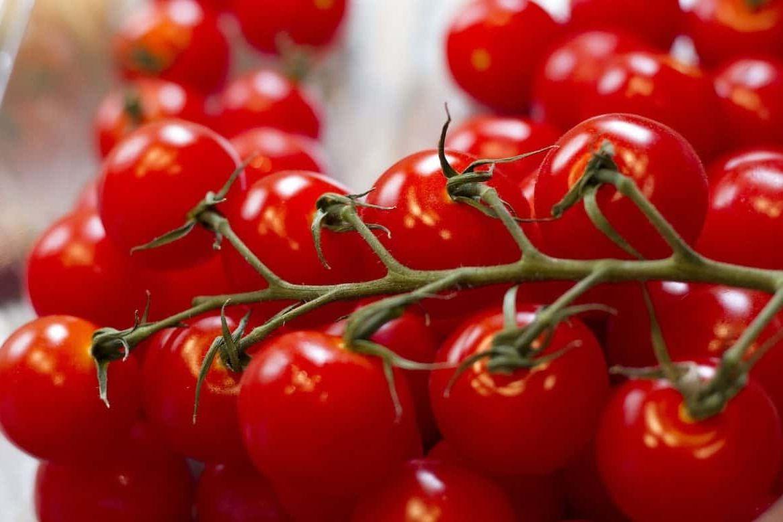 Как хранить виноградные помидоры?
