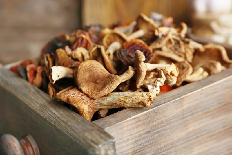 Как сушить грибы, зачем, и что с ними делать дальше?